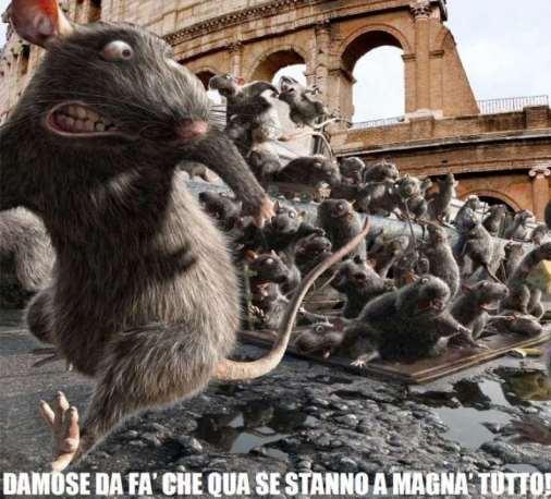 topi-roma-